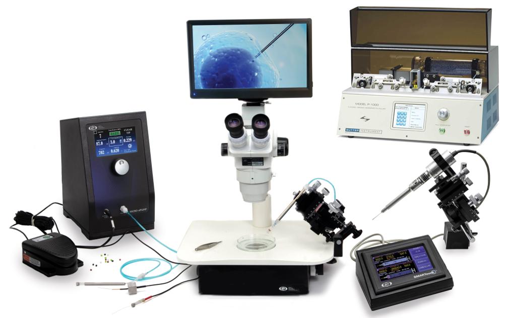 Zebrafish Microinjection Setup