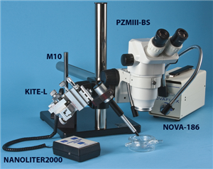 sample injection setup with Kite manipulator and Nanoliter Injector